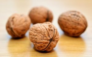 Walnuts without shells are 4% water, 15% protein, 65% fat, and 14% carbs, including 7% dietary fiber. In a 100 gram serving, walnuts supply 654 calories and abundant material (more than 19% of the Daily Value or DV) of numerous dietary minerals, especially manganese at 163% DV, and B vitamins. Unlike a lot of nuts that are high in monounsaturated fats, walnut oil is made up mostly of polyunsaturated fats (72% of total fats), especially alpha-linolenic acid (14%) and linoleic acid (58%), although it does include oleic acid as 13% of total fats.