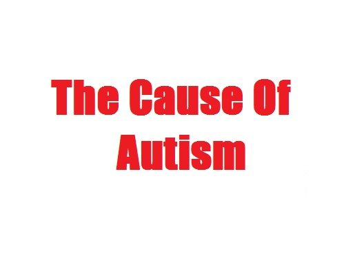 The Cause Of Autism