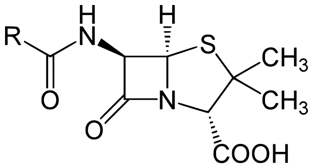 chemical structure of the Penicillin