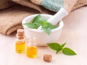 essential oil and mint