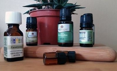 essential oils in glass bottle