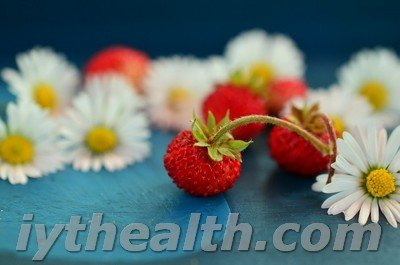 Wild strawberries and daisy flowers