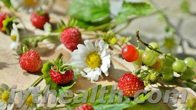 Berries and wild strawberry flowers