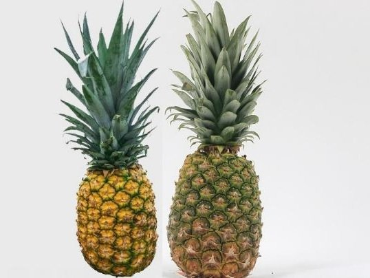 Two pineapple