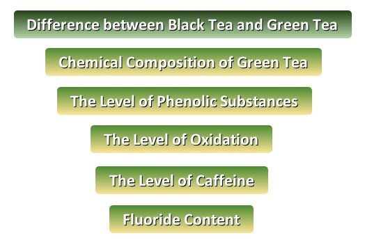What is the Difference between Black Tea and Green Tea
