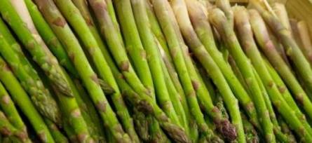 Asparagus is abundant in rutin