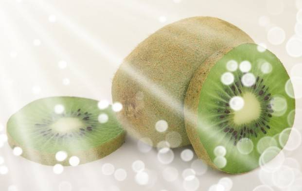 The kiwifruit or the Chinese gooseberry