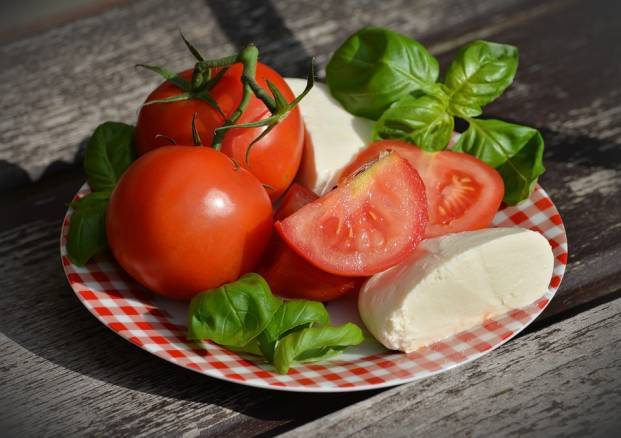 Tomatoes, greens and cheese on a saucer