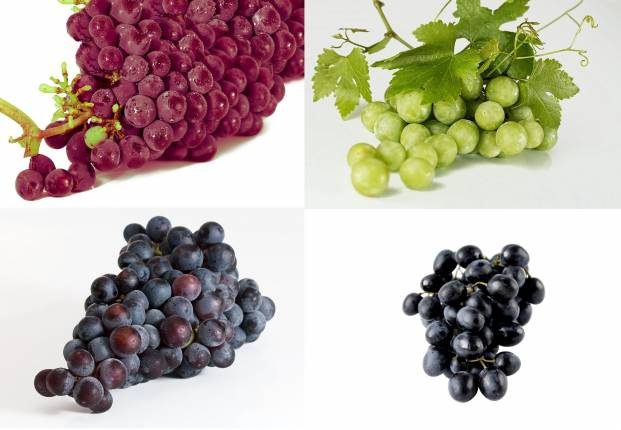 Colorful grapes