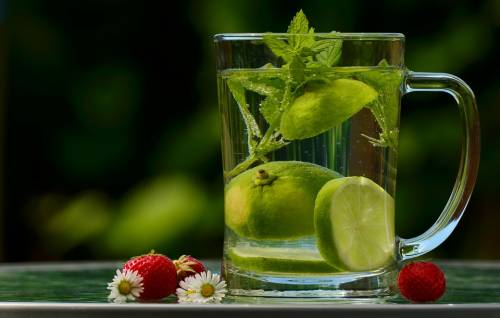 Lemon mint water weight loss
