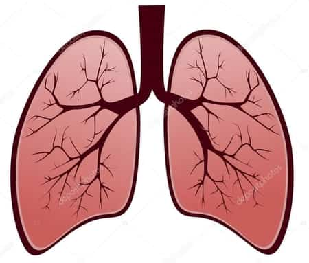 Acute hypercapnic respiratory failure can be experienced in the emergency department and inpatient floor, as well as in postoperative and extensive care systems.