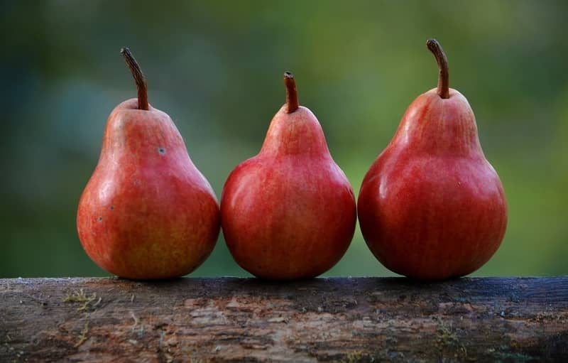 Food With Highest Fiber: Pears