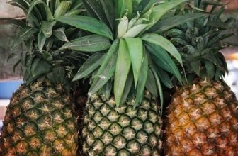 Is Pineapple Good for You to Eat?