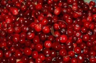 Benefits of Eating Dried Cranberries